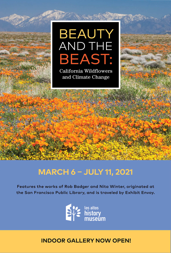 Field of brilliant orange poppies and other wildflowers in flat area with San Bernadino Mountains  with snow on them in the background. BATB exhibit poster for the Los Altos History Museum exhibit March 6 - July 11, 2021