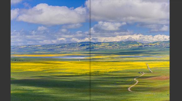 carizzon plain national monument superbloom 2017_x1024