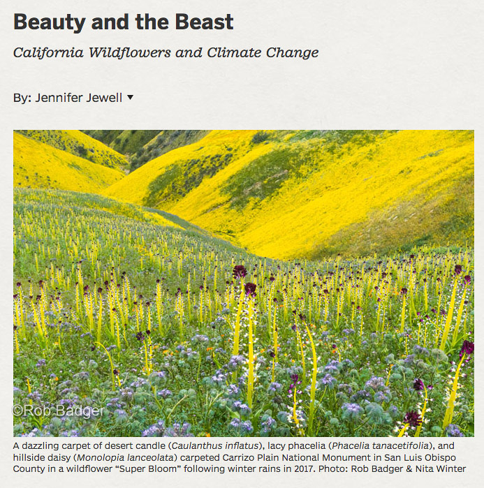 Pacific Horticultural Magazine_Beauty and The Beast Article Spring 2018