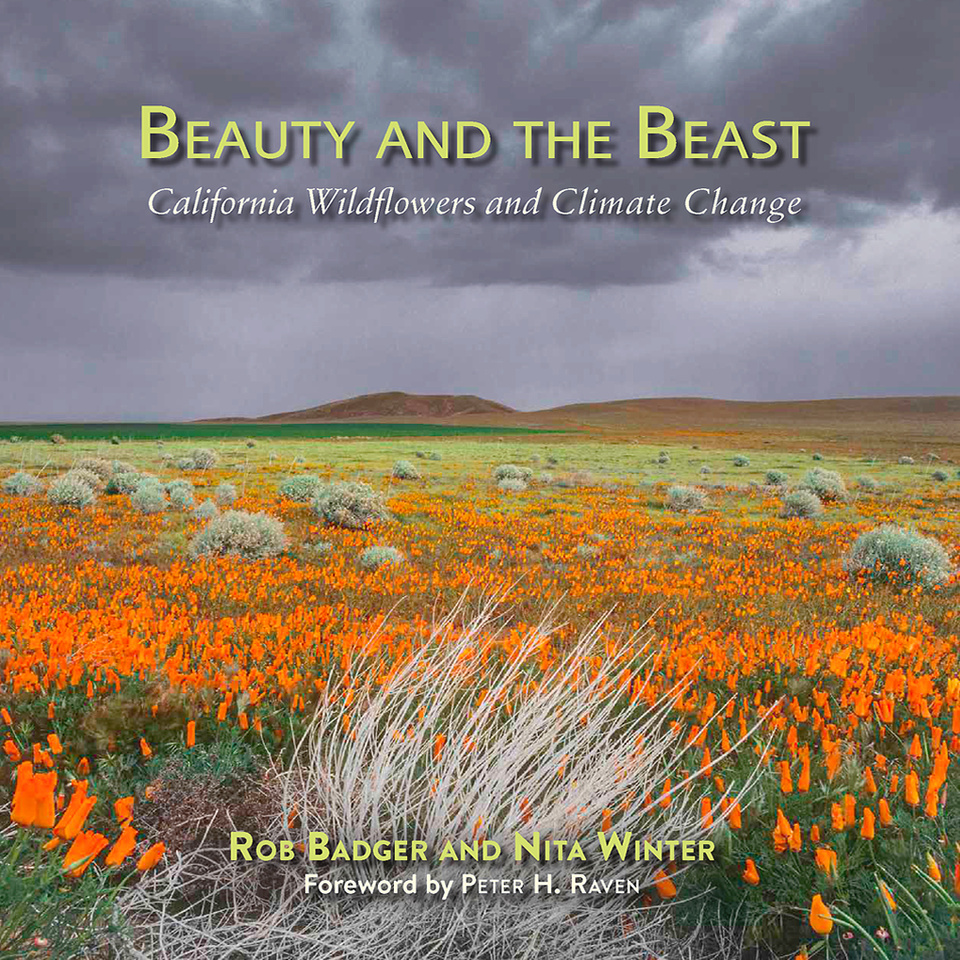 Beauty and the Beast: California Wildflowers and Climate Change book cover Field of bright orange poppies with dark clouds over head.