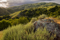 Clouds at sunset over green grasslands and oak woodlands in the Loma Alta Marin County Open Space District Land, in springtime_Marin County_California_ USA__X1_4378_Rob Badger