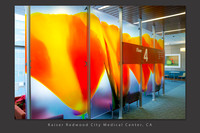 California Poppies, Contact Serie: 8' x 20' lobby divider: Kaiser Redwood City Meidcal Centerl ca Healthcare slideshow