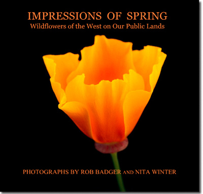 "A working cover of the upcoming book""Impressions of Spring: Wildflowers of the West on Our Public Lands,"""
