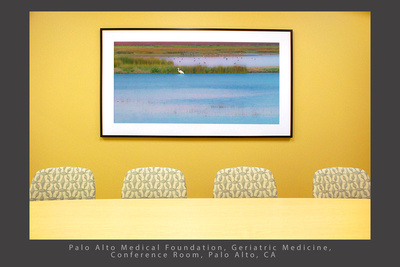"Great Egret at Dusk, Woodbridge, 30 x 72"" print, PAMF_Geriatric Medicine Palo Alto CA Healthcare installation_x1500"
