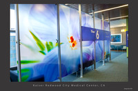 Back lit Phlox contact 8 x 20' Lobby Divider, Kaiser Redwood City, CA Medical Center