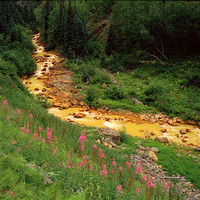 Acid mine drainage from abandoned gold mines pollutes Red Mountain Creek Uncompahgre National Forest SAn Juan Mountains Ouray County Colorado Rob Badger