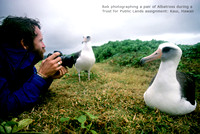 Rob Badger photographing Albatross Kilauea Hawaii Trust For Public lands