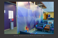 Phlox contact 8 x 20' Lobby Divider, Kaiser Redwood City, CA Medical Center