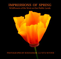 cover_impressionsofspring