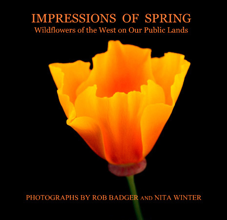 Cover prototype of book_Impressions of Spring: A Voice for Wildflowers of the West on Our Public Lands nature photography Rob Badger Nita Winter